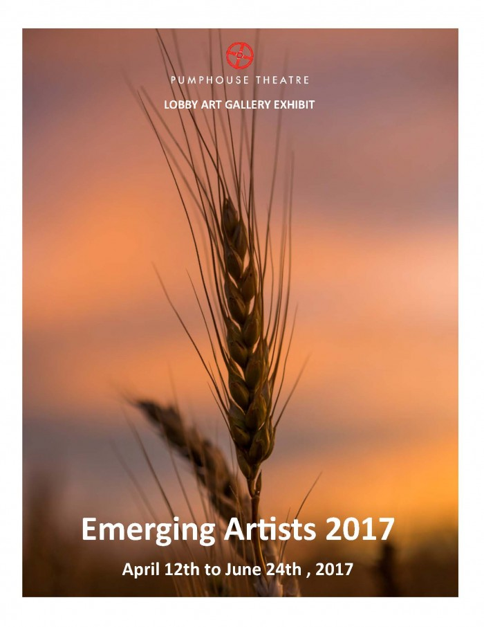 Emerging Artist 2017 Gallery Title page